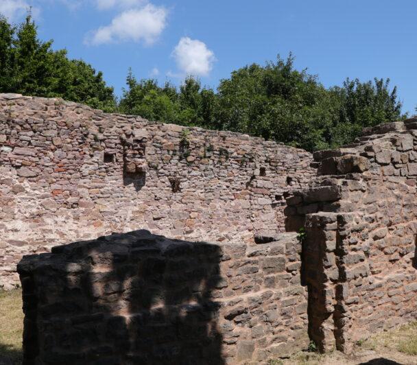 gyongyszemek-nyomaban-magyarorszagon-2-kirandulas-a-mecsekben-a-palos-kolostor-romjaihoz