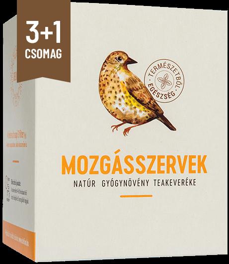 mozgasszervek-csomag-31-natur-gyogynoveny-teakeverek